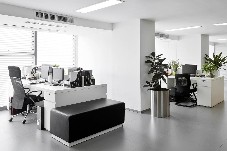 Noleggio Stampanti Multifunzione A4 E A4 Elle Di Ufficio